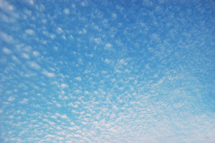 雲 うろこ