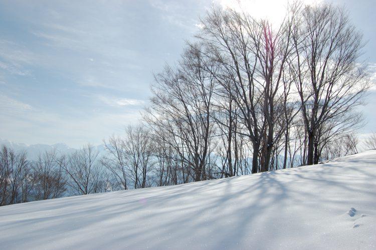 「冬 フリー素材 写真」の画像検索結果